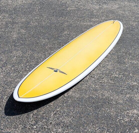 Mid Length Egg Surfboard